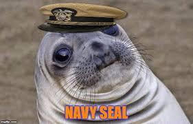 Navy Seal Meme - navy seal of approval imgflip