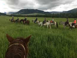 Montana How Far Can A Horse Travel In A Day images Elk river outfitters explore montana jpg