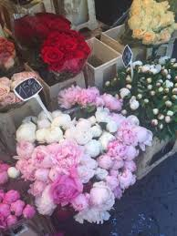 Peonies For Sale Peonies For Sale Picture Of Marche Aux Fleurs Cours Saleya Nice