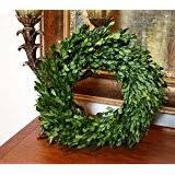 preserved boxwood wreath flora decor preserved boxwood wreath 16 home