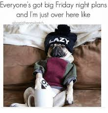 Friday Night Meme - everyone s got big friday night plans and i m just over here like