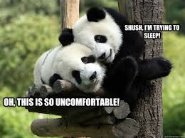 Panda Mascara Meme - panda mascara meme best image of panda 2018