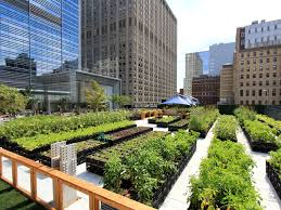 farm to table restaurants nyc farm to table restaurants in new york with on site or nearby gardens