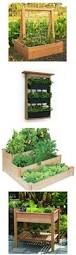 Advantage Of Raised Garden Beds - a complete how to guide for building your own garden boxes