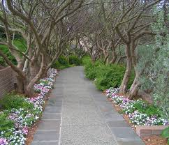 Arboretum by Dallas Arboretum U0026 Botanical Garden