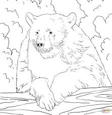 teddy bear coloring pages theme printable technosamrat of bears to