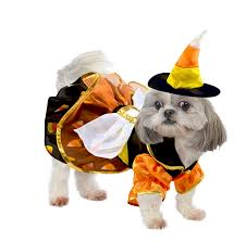 halloween costumes candy corn candy corn witch costume sp14719