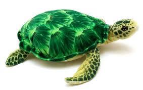 amazon com olivia the tortoise 20 inch big sea turtle stuffed