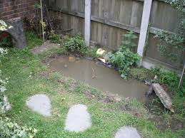Small Garden Ponds Ideas Small Garden Pond Corimatt Garden Small Garden Pond Waterfall