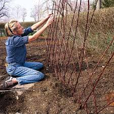 how to build a trellis archway pick up sticks and make a twig trellis 9 steps with pictures