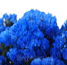statice flowers statice tinted blue flowers at wholesale price