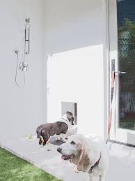 pet friendly house plans pet friendly house design house and home design