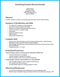 Resume Summary Examples For Software Developer by 240825420246 Google Doc Resume Template Excel Hotel Night