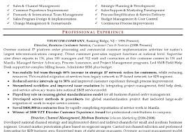 resume sample sales executive