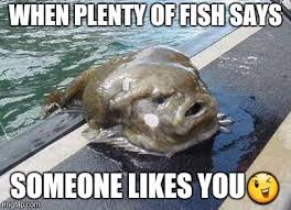 Fish In The Sea Meme - gross fish latest memes imgflip