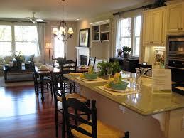 Home Design Model by Perfect Apartment Design Model For Classic Home Interior Design