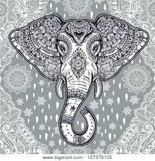 beautiful bohemian elephant vector photo bigstock