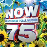 various artists now that s what i call 75 cd raru