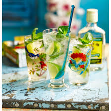 mojito cocktail bottle mojito cocktail recipe good housekeeping
