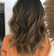 highlights and lowlights for light brown hair highlights and lowlights for brown hair free download wiring diagrams