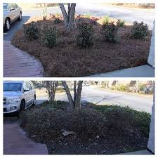 Landscaping Summerville Sc by Charleston Sc Landscaping Ideas Arrow Grounds Maintenance