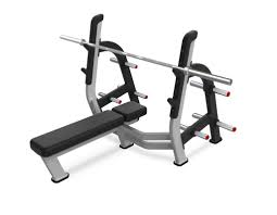 nautilus olympic weight bench and squat rack bench decoration