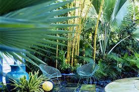 south florida native plants miami plant zones usda plant zones for south florida