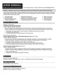 ceo cover letter exles cio resumes sles executive resume exles 7 executive summary