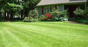 Lawn Free Backyard Mow Your Lawn Stress Free Using The Greenpal App The Uber For
