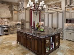 kitchen ideas for homes 307 best kitchen designs essentials images on kitchen