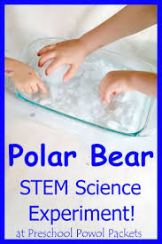 best 25 polar bear crafts ideas on pinterest polar bears for