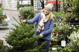 tree cheapest artificial trees on the uk high