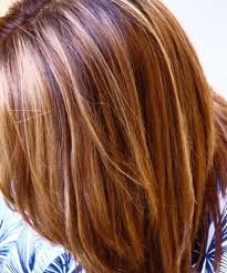 Highlight Colors For Brown Hair Auburn Lowlights With Blonde Highlights This Is Pretty Cool