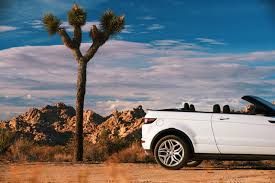 land rover desert joshua tree national park night sky festival cool hunting