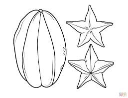 carambola or star fruit coloring page free printable coloring pages