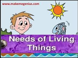 Characteristics Of Living Things Worksheet Middle Needs Of Living Things Animation Lesson For