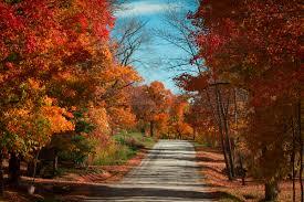 8 destinations de roadtrip près de montréal à explorer cet automne