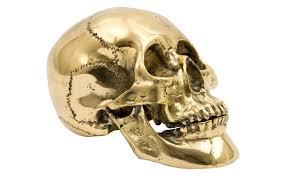 brass skull jayson home