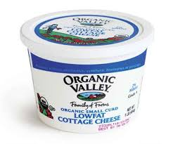 Cottage Cheese Daisy by Tasting Panel Cottage Cheese Finecooking