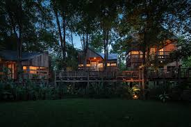 backyard jungle stunning eco friendly homes engulfed in forest