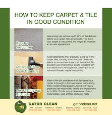 Dog Urine On Laminate Flooring How To Clean It Blog Carpet Cleaning Tile Cleaning Gator Clean Florida