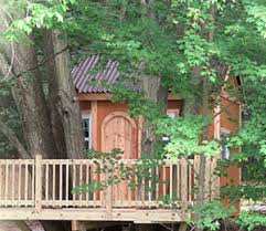 building your own tree house how to build a house tree houses and building permits construction of tree houses