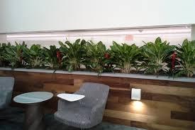 interior plant design instainterior us