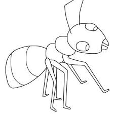 ant drawing kids
