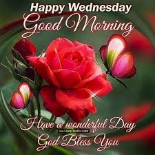 happy wednesday morning a wonderful day pictures photos