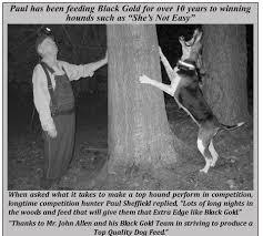 bluetick coonhound breeders ohio bluetick breeders of america home facebook