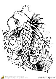 coloriage poisson carpe koi sur hugolescargot com