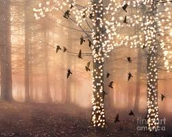 surreal nature trees woodlands forest sparkling lights