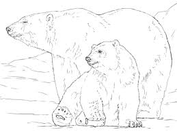 polar bear baby coloring free printable coloring pages