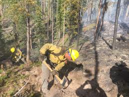 Colorado Wildfire Status by Governor Carney Honors Delaware Forest Service Wildfire Crew At
